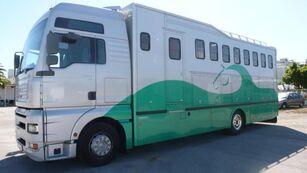 MERCEDES-BENZ ACTROS 25 42 horse truck