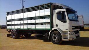 DAF LF55 250 livestock truck