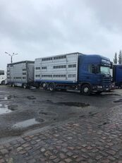 SCANIA 124-420 livestock truck + livestock trailer